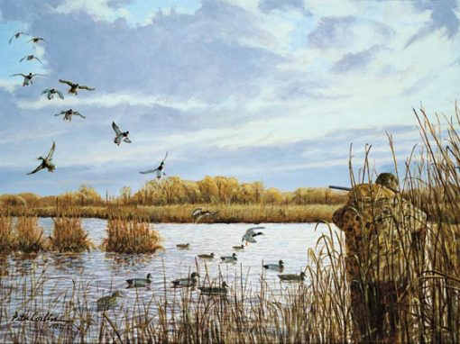 Waterfowl Hunting activity